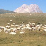 Abruzzo en Gran Sasso